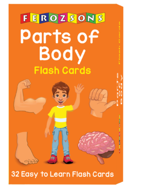 Parts Of Body Flash Cards