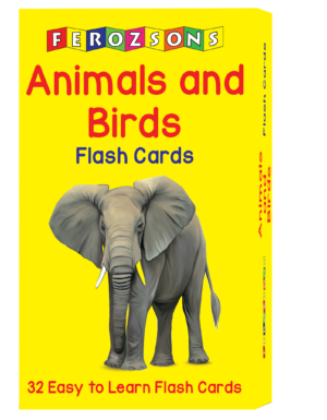 Animals and Birds Flash Cards