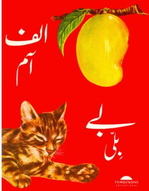 Alif Aam Bay bili
