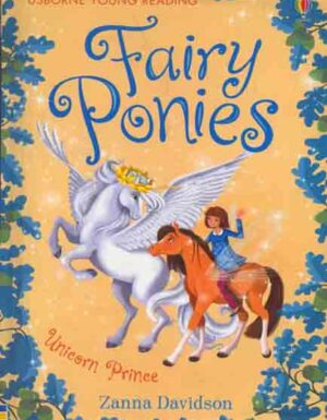 Fairy Ponies Young Reading:Series 3