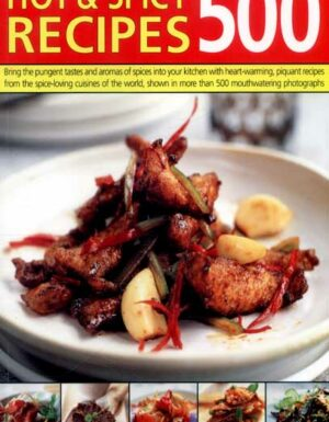 Hot & spicy recipes 500