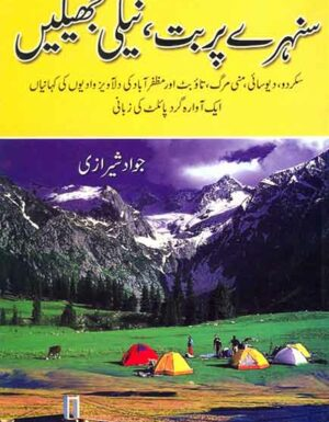 Shunari Parbat Nile Jhelain