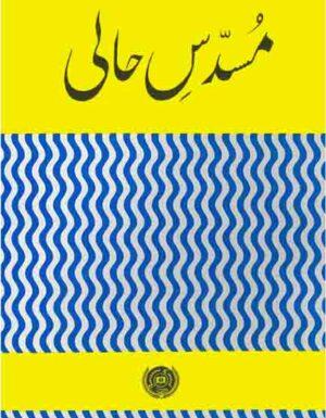 Musaddas E Hali